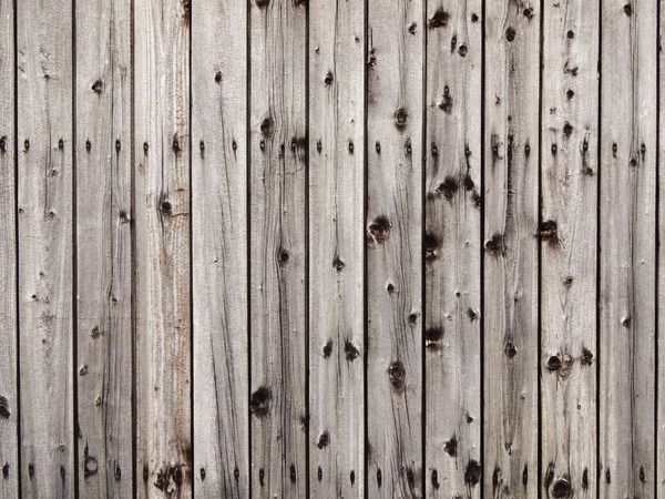 Wooden Shed Wall: A weathered wooden wall of a shed.