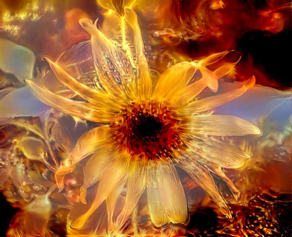 Golden Flower: A magical, soft flower collage radiant with golden light.