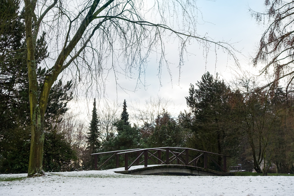 winter bridge landscape: winter bridge landscape