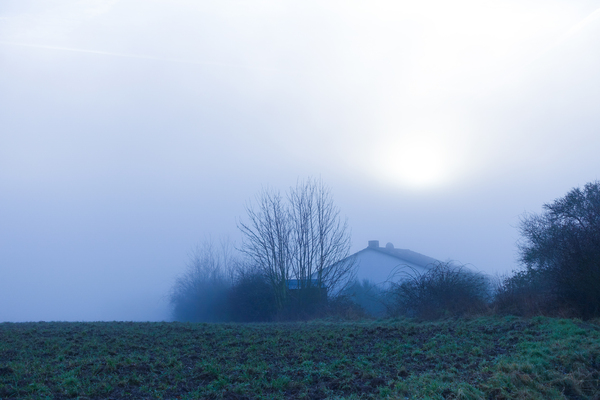 foggy house scenery: foggy house scenery