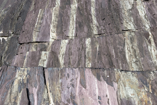 Rock texture: Strange purple and grey striped and fractured sedimentary rock on the coast of northern Cornwall, England.