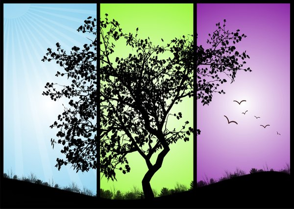 black tree on a colorful backg: black tree on a colorful background