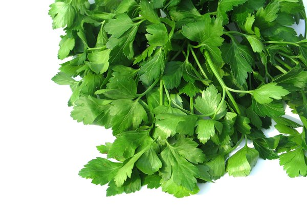 parsley 1: none