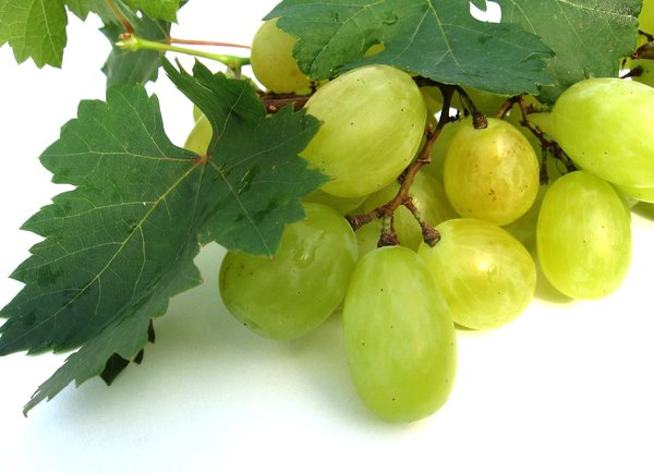 grapes 1: none
