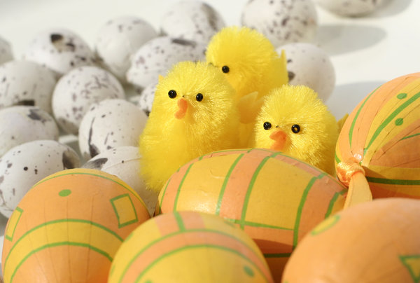 easter eggs and little chicks: Easter decoration (also check my chicks from last year!)