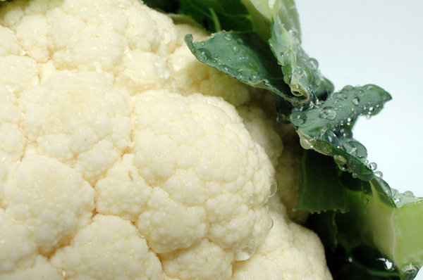 Cauliflower serie # 3 (detail): Small waterdrops on a fresh cauliflower ...