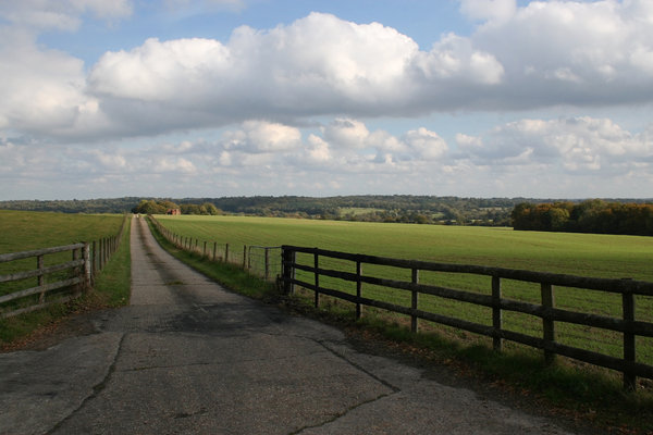 Farm lane: A lane leading to a farm in West Sussex, England.