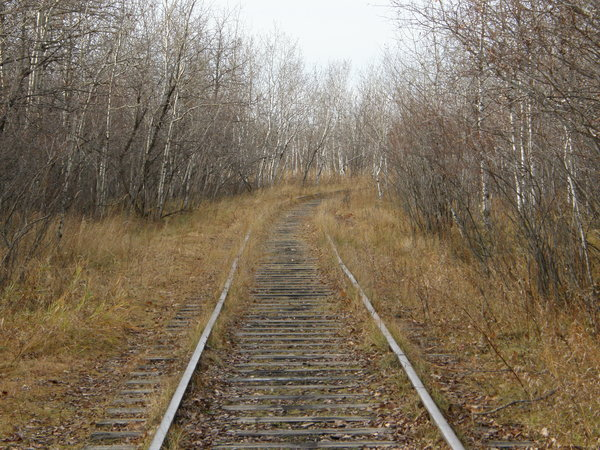 Railroad Tracks: Abandoned railway.
