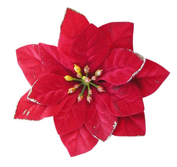 Flower Cut Out | New Calendar Template Site