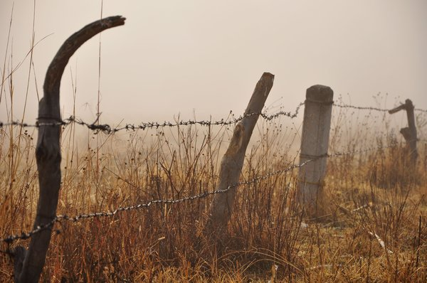 Wired fence: Wired fence in the country, against a misty backdrop, in the morning