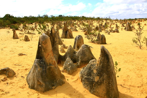 Pinnacles: View of the Pinnacles in Western Australia
