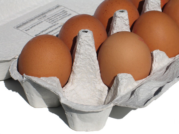 eggs carton 1: none
