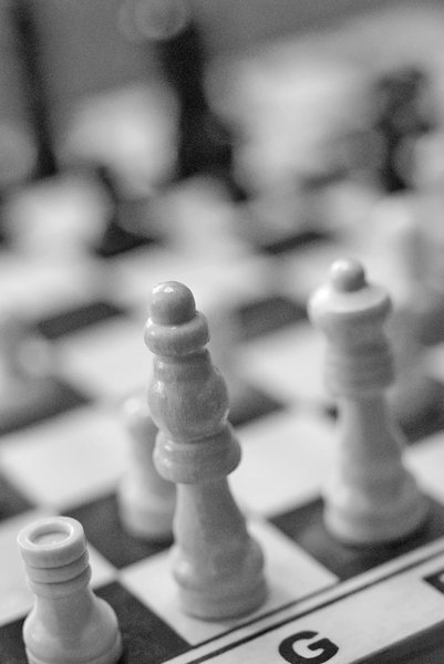 White chess army 5: White pawns and pieces on the  chequer