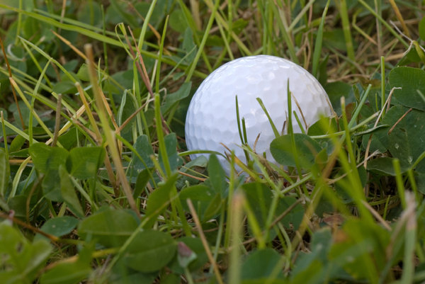 Golf ball: Ball on the grass, close-up
