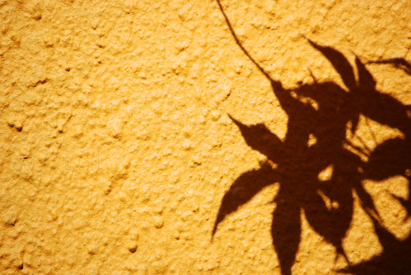 acer shadow: no description