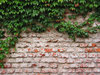 brickwall texture 45