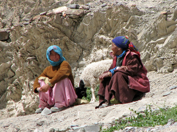 Ladakhi Women with a Sheep: no description