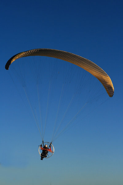 Paraglider: Man in yellow parachute, paragaling in a clear blue day sky.