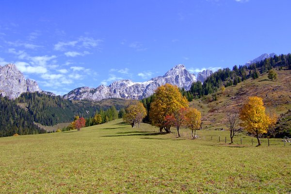"autumn mountains: die ""hofalmen"" in filzmoos - salzburg austria, near the ""bishops-hut"" mountain"