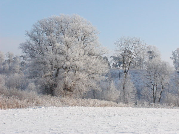 White Winter 1: Scenery from the countryside