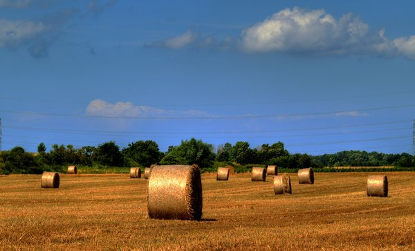 Hay in HDR: Hayrolls. Picture taken using HDR. 3 pictures in all.