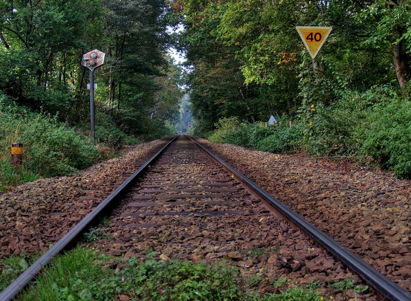 Railway - HDR: Tracks in the forrest - still in use; one of the most beautiful railways in Denmark