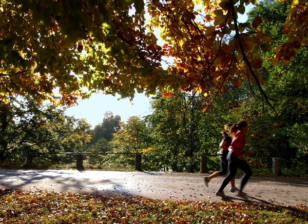 Running: Two girls running in a autumn forrest