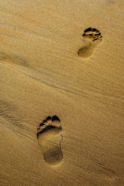 Footsteps: Footprints in the sand