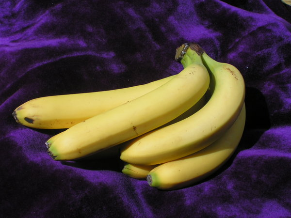 bunch of bananas: bananas, no flash, sorry no photoshop either!