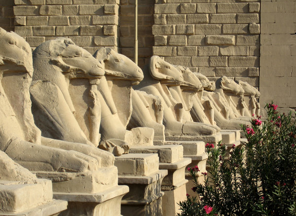 Avenue of sphinxes at Karnak: Row of ram headed sphinxes outside the first pylon at the entrance of Karnak Temple,Luxor