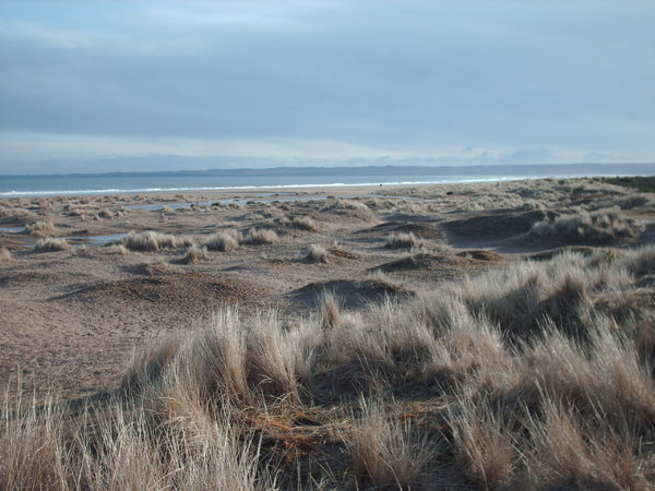 Winter beach: View of a Scottish beach in winter