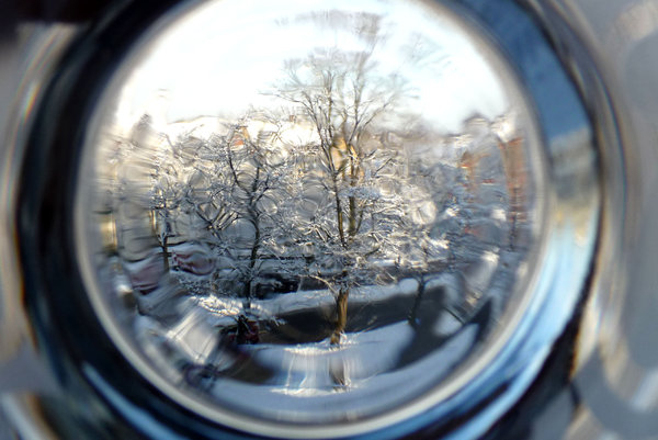 Seasonal blur: A tree in my local street viewed through a winter lens.