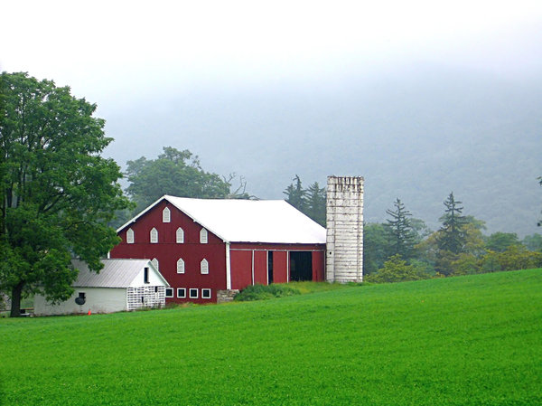 Misty Morning Barn: Pennsylvania farm on a misty morning