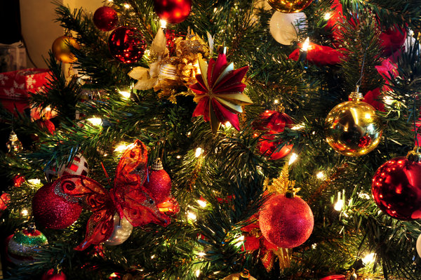 Free stock photos - Rgbstock - Free stock images | Christmas Tree ...
