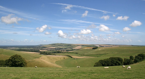 Green valley: A valley below the South Downs, West Sussex, England, in summer.