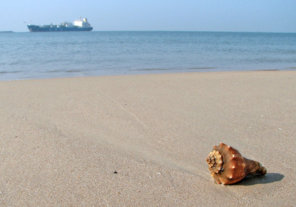 Shell on the beach: Shell/ Oil  (I had the whole Oil vs Sea thing in mind , while shootign this one)