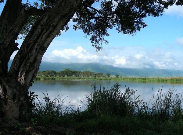 beautiful  lake 2: photo taken in Tanzania