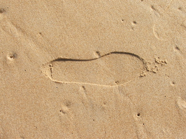 prints in the sand: footprint in the sand