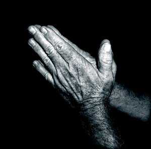 Praying Hands - Duotone