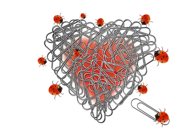 Heart, paperclips and ladybugs: Ladybugs assembling a heart with paperclips.