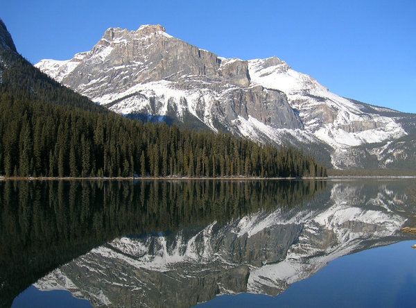 Mirror Mirror 1: Emerald lake nestled in the Rocky Mountains of British Columbia, Canada.