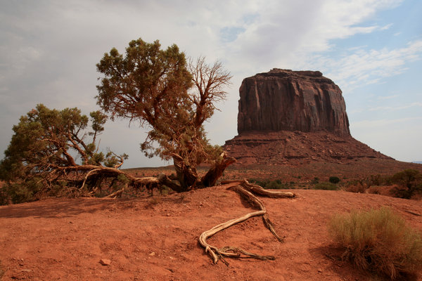 American dream 5: Landscape of monument valley