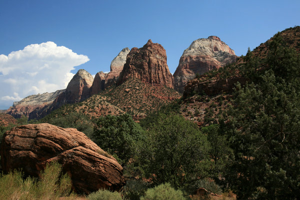 Zion national park 1: Landscape of Zion national park
