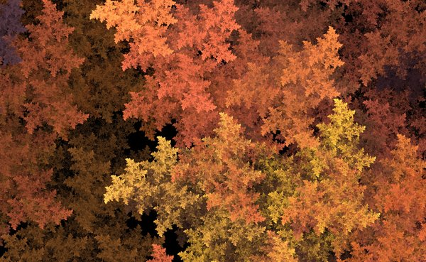 Autumn Leaves: Images generated by soft Apophysis and me !