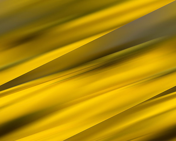 yellow stripes background: yellow stripes background