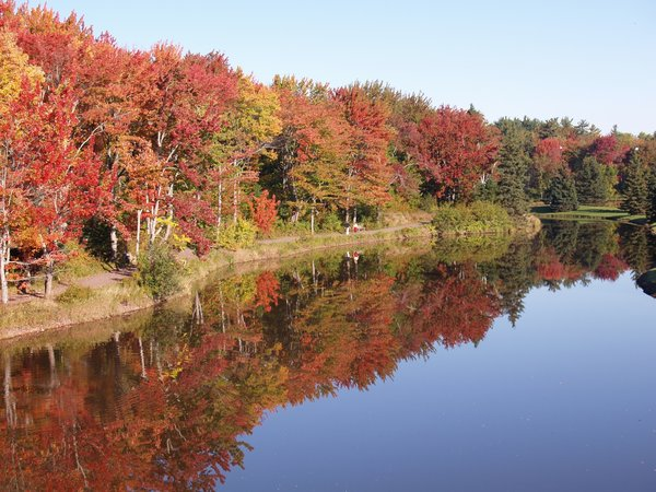Fall Colors: The beauty of fall always amazes me This picture is Centennial park in Moncton New Brunswick Canada