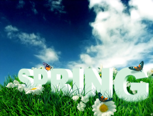 SPRING SEASON: From the Seasons SeriesS.P.R.I.N.G3D text incorporated into a spring photo to highlight the concept.Original Background image Credit: Jazzahttp://www.sxc.hu/browse. ..