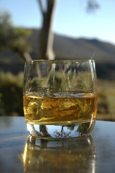 Jameson in the bush: Double Jameson in a whiskey tumbler.NB: Credit to read