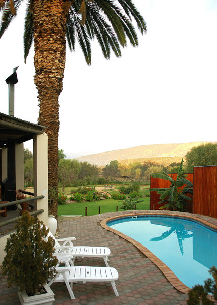 One crisp morning: What I though was quite an attractive garden scene on a cold ,crisp morning in the Klein Karoo, South Africa.NB: Credit to read