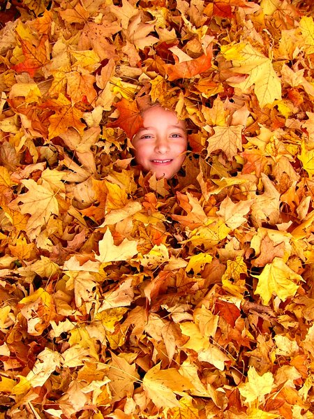Fun: My daughter buried in the leaves.